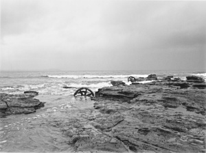 Trams wheel in the tide at Windang Island