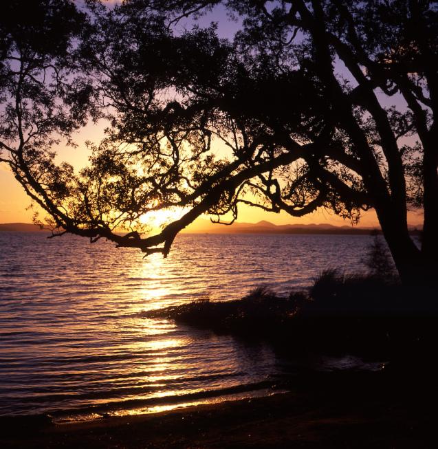 Golden lake - Myall Lakes NP