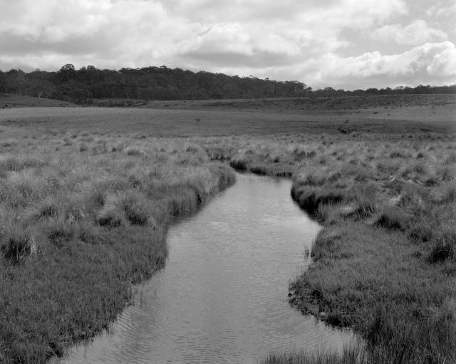 Murrumbidgee - Long Plain