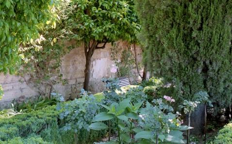 May 2017 Alhambra OM2 Portra800 13